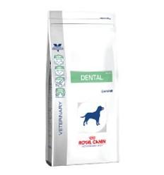 Royal Canin Dental 6Kg