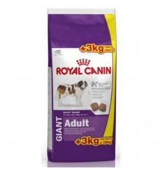 Royal Canin Giant Adult 15 + 3kg Oferta