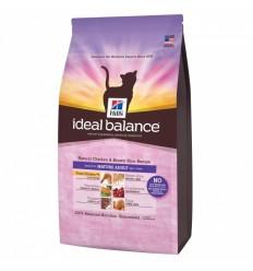 Hill's Ideal Balance Gato Sem Cereais Atum e Batatas