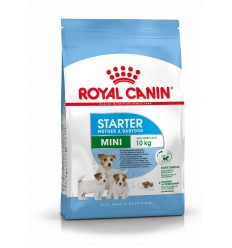 Royal Canin Mini Starter, Cão, Seco, Adulto, Alimento/Ração
