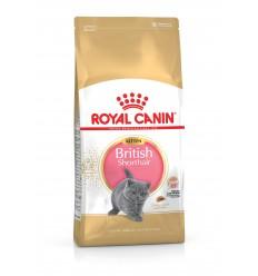 Royal Canin Britsh Shorthair kitten 2Kg