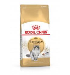 Royal Canin Bosques da Noruega 2kg