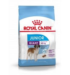 Royal Canin Giant Júnior, Cão, Seco, Cachorro, Alimento/Ração