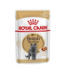 Royal Canin British Shorthair (Loaf), Gatos, Húmidos, Alimento