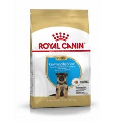 Royal Canin German Shepherd Puppy, Cão, Seco, Cachorro, Pastor Alemão, Alimento/Ração