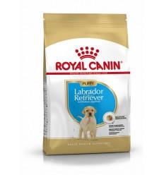 Royal Canin Labrador Retriever Puppy, Cão, Seco, Cachorro, Alimento/Ração