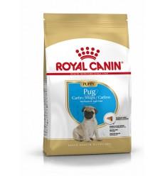 Royal Canin Pug Puppy, Cão, Seco, Cachorro, Alimento/Ração