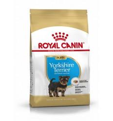 Royal Canin Yorkshire Terrier Puppy, cão, Seco, Cachorro, Alimento/Ração
