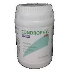 Sofcanis Condrophil ( Articulações ) 80 Cápsulas