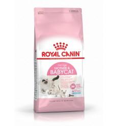 Royal Canin Mother & Babycat, Gato, Seco, Adulto, Gatinho, Alimento/Ração