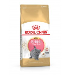 Royal Canin Britsh Shorthair kitten 2Kg