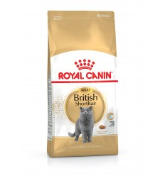 Royal Canin British Shorthair, Gato, Seco, Adulto, British Shorthair, Alimento/Ração