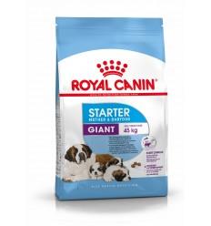 Royal Canin Giant Starter, Cão, Seco, Adulto, Alimento/Ração