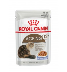 Royal Canin Ageing +12 (Jelly), Gatos, Húmidos, Sénior, Alimento