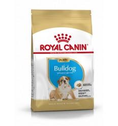 Royal Canin Bulldog Puppy, Cão, Seco, Cachorro, Alimento/Ração