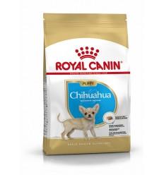 Royal Canin Chihuahua, Cão, Seco, Júnior, Alimentação/Ração