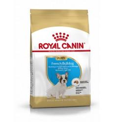 Royal Canin French Bulldog Puppy, Cão, Seco, Cachorro, Alimento/Ração