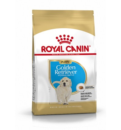 Royal Canin Golden Retriever, Cão, Seco, Júnior, Alimentação/Ração