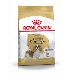 Royal Canin Cavalier King Charles Adult, Cão, Seco, Adulto, Alimentação/Ração