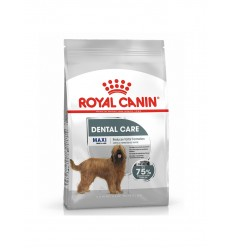 Royal Canin Maxi Dental Care, Cão, Seco, Adulto, Alimento/Ração