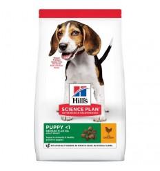 Hill's Science Plan Cão Puppy Medium Frango