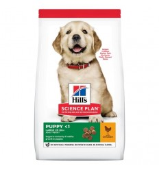Hill's Science Plan Puppy Large Breed 11kg