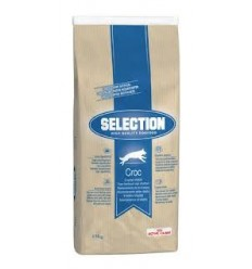 Royal Canin Selection HQ Croc Adult (económica)
