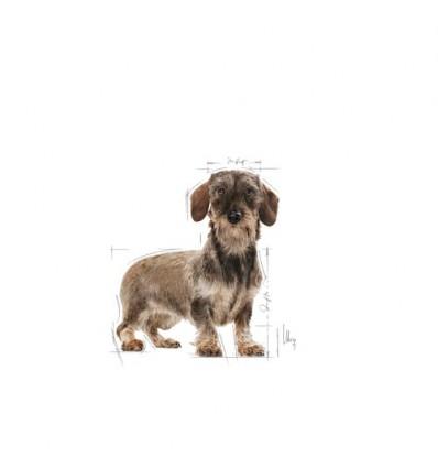 Royal Canin X-small light weight care, Cão, Seco, Adulto , Alimento/Ração