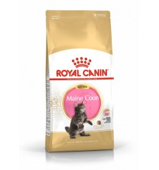 Royal Canin Kitten Maine Coon, Gatinho, Seco, Maine Coon, Alimento/Ração