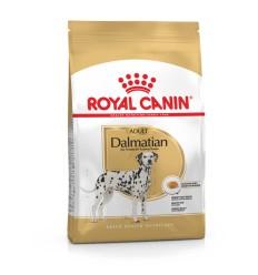 Royal Canin Dalmata Adult, Cão, Seco, Adulto, Alimento/Ração