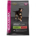 Eukanuba Cão Adult All Size Salmão