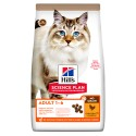 Hill's Science Plan Gato Adult Sem Cereais Frango