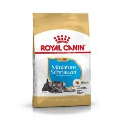 Royal Canin Miniature Schnauzer Puppy, Cão, Seco, Puppy, Alimento/Ração