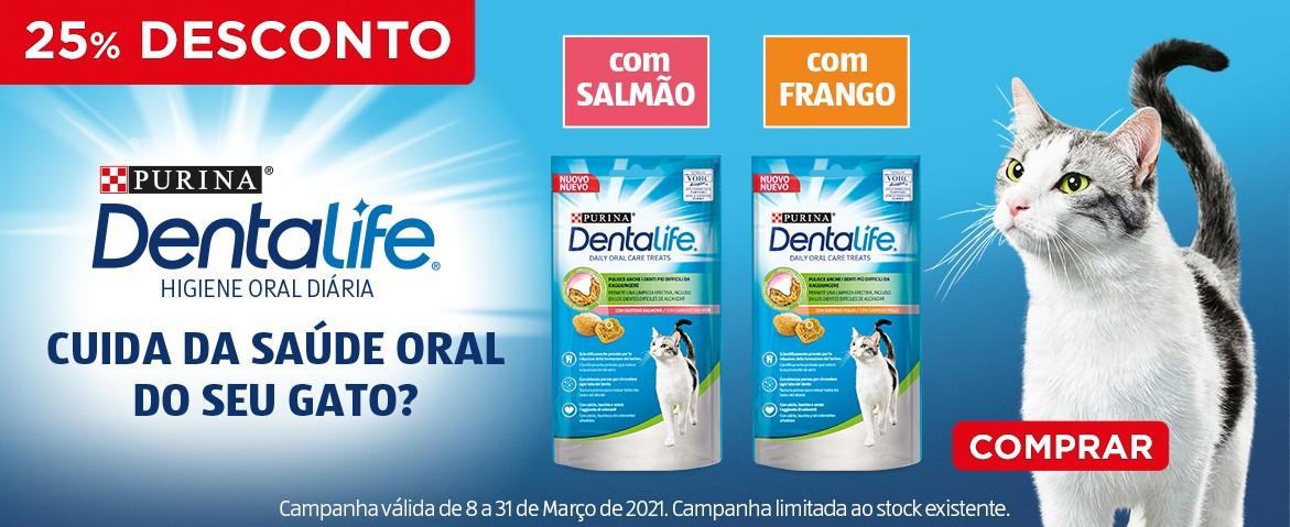 Dentalife Gato